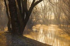Aube à un lac photo libre de droits