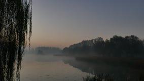 aube Brume au-dessus de l'étang katowice poland photographie stock libre de droits