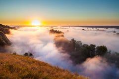 Aube brumeuse de colline au-dessus de vallée et de la forêt Image libre de droits