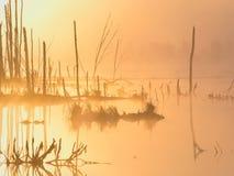 Aube brumeuse sur les lacs Photographie stock