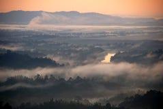 Aube de la forêt Images libres de droits