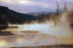 Aube de Mammoth Hot Springs photographie stock