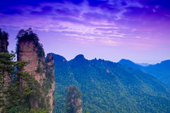 Aube à la montagne du parc national de Zhangjiajie Photographie stock libre de droits