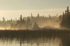 Aube sur la rivière dans Ontario du nord Image libre de droits