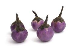 Aubergine. A violet very small aubergine Stock Image