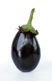 Aubergine Stock Photography