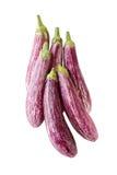aubergine Royaltyfri Bild