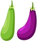 aubergine stock illustrationer