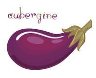 Aubergine royalty-vrije illustratie