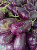 aubergine Photo libre de droits