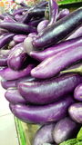 aubergine Stockfoto