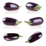 aubergine Stockfotografie