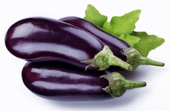 Aubergine Royalty Free Stock Photography