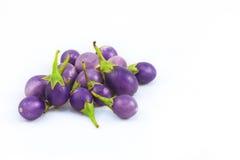 aubergine Arkivbilder