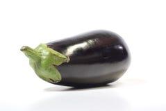 Aubergine.beringela Stock Image