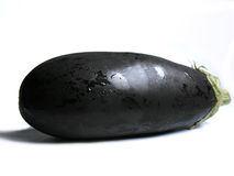 Aubergine or eggplant  Stock Image