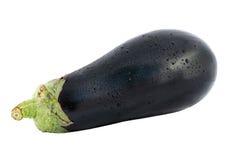Aubergine eggplant Royalty Free Stock Photo