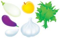 Aubergine, Eierkürbis, Knoblauch, Aprikose und so vektor abbildung