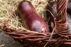 Aubergine in einem Korb Lizenzfreies Stockfoto
