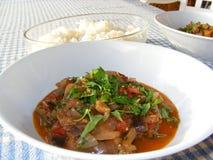 aubergine gulaszu tradycyjny turkish Zdjęcia Royalty Free