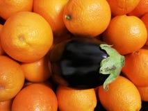 Aubergine har partiet med apelsiner fotografering för bildbyråer