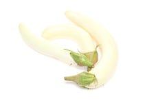 Aubergine i en vit bakgrund Arkivfoton