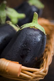 Aubergine inside basket closeup Stock Photos