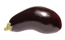 aubergine isolerad white Fotografering för Bildbyråer