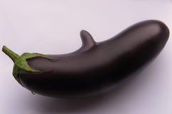 Aubergine mit Wekzeugspritze lizenzfreie stockfotografie