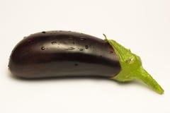 Aubergine op Wit Stock Fotografie