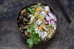 Aubergine, quinoa and tofu in coconut bowl. Buddha bowl with quinoa, roast aubergine and silky tofu royalty free stock photos
