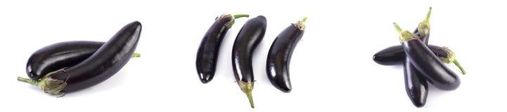 Aubergine sur un fond blanc Les aubergines sont fraîches et délicieuses Légumes frais sur un fond blanc Photo stock