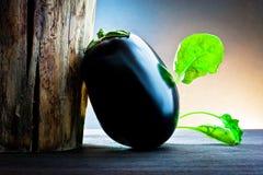 Aubergine und Spinat auf Holz Lizenzfreies Stockfoto