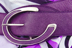 Aubergine violet leather belt Royalty Free Stock Photos