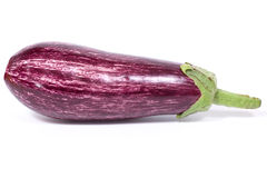 Aubergine Zebra Royalty Free Stock Photos