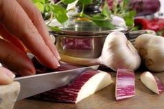 auberginecutting Arkivbild
