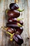 auberginen Stockbilder