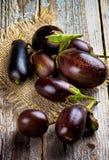 auberginen Stockfoto