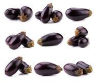 Auberginen- oder Auberginengemüse lokalisiert auf weißem Hintergrund Lizenzfreies Stockfoto