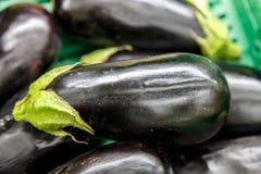 Auberginengruppe von einem Markt lizenzfreies stockfoto