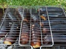 Aubergines на гриле Стоковое Фото