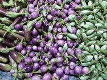 Aubergines stock afbeeldingen