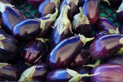 Aubergines photo stock