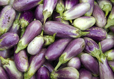Aubergines. Baby aubergines for sale, Singapore Royalty Free Stock Photography