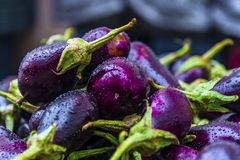 Aubergines on a bazaar stall in a rainy day, close up royalty free stock image