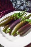 Aubergines die op het braadstuk bakken Royalty-vrije Stock Fotografie