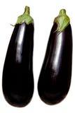 aubergines dwa Obrazy Stock