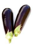 aubergines dwa Obraz Stock