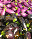 Aubergines. Or eggplants in a market Stock Image