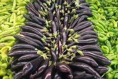 Aubergines en groene Spaanse peper Royalty-vrije Stock Afbeeldingen